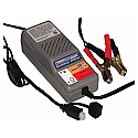 Battery Sitter Battery Charger (2.5Ah-32 Ah)