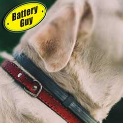 Dog Collar Batteries