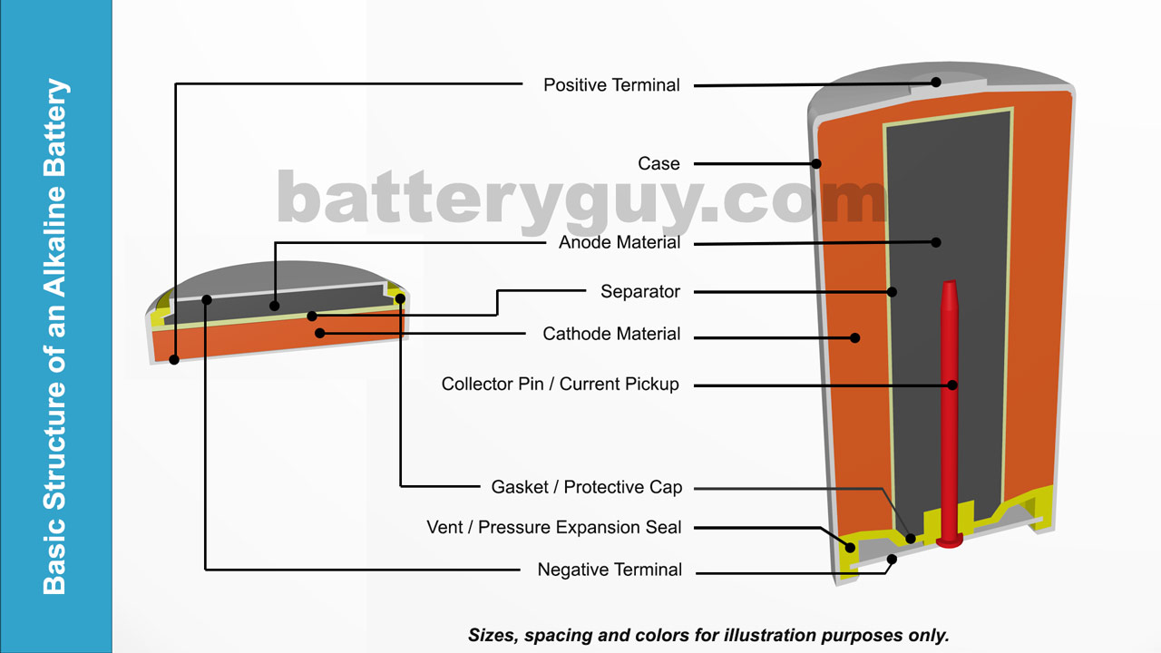 Alkaline battery coin and can structures