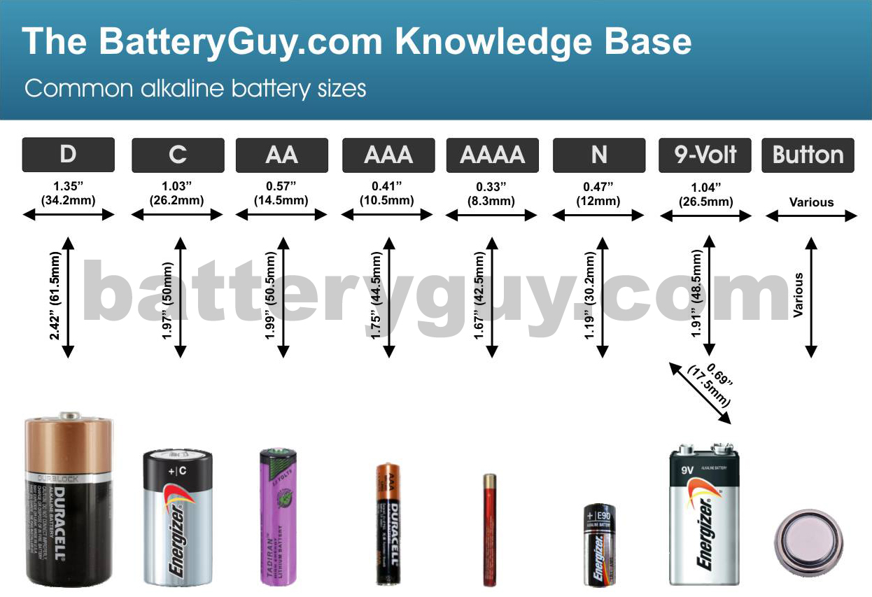 Common alkaline battery sizes